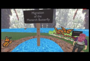Monarch Butterfly Lesson